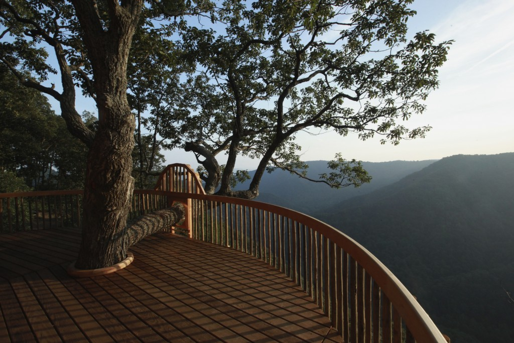 The Tree House at Primland Resort