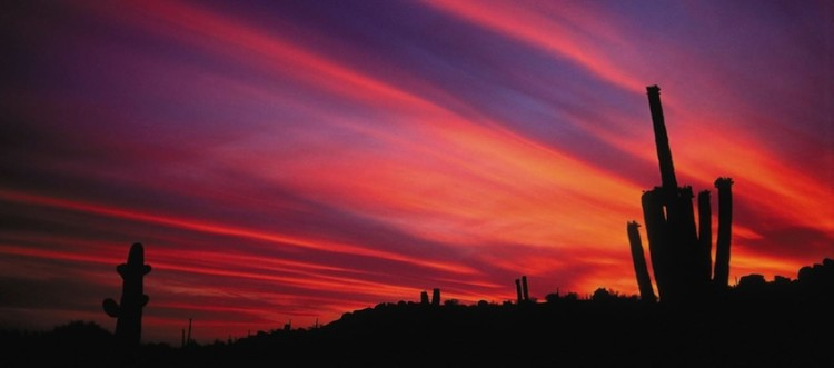 The perfect wedding backdrop: an Arizona sunset