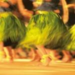 Grass skirts of hula dancers
